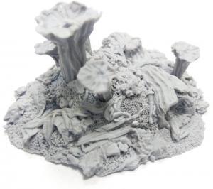 Magic mushrooms hill №1