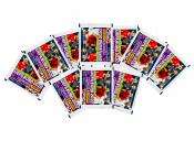 10-x soccer stickers panini Road to EURO 2020